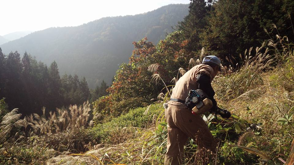 秋のカヤ刈り ~農村の文化と景観を守る~