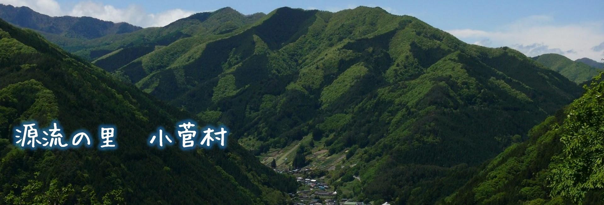 小菅村について