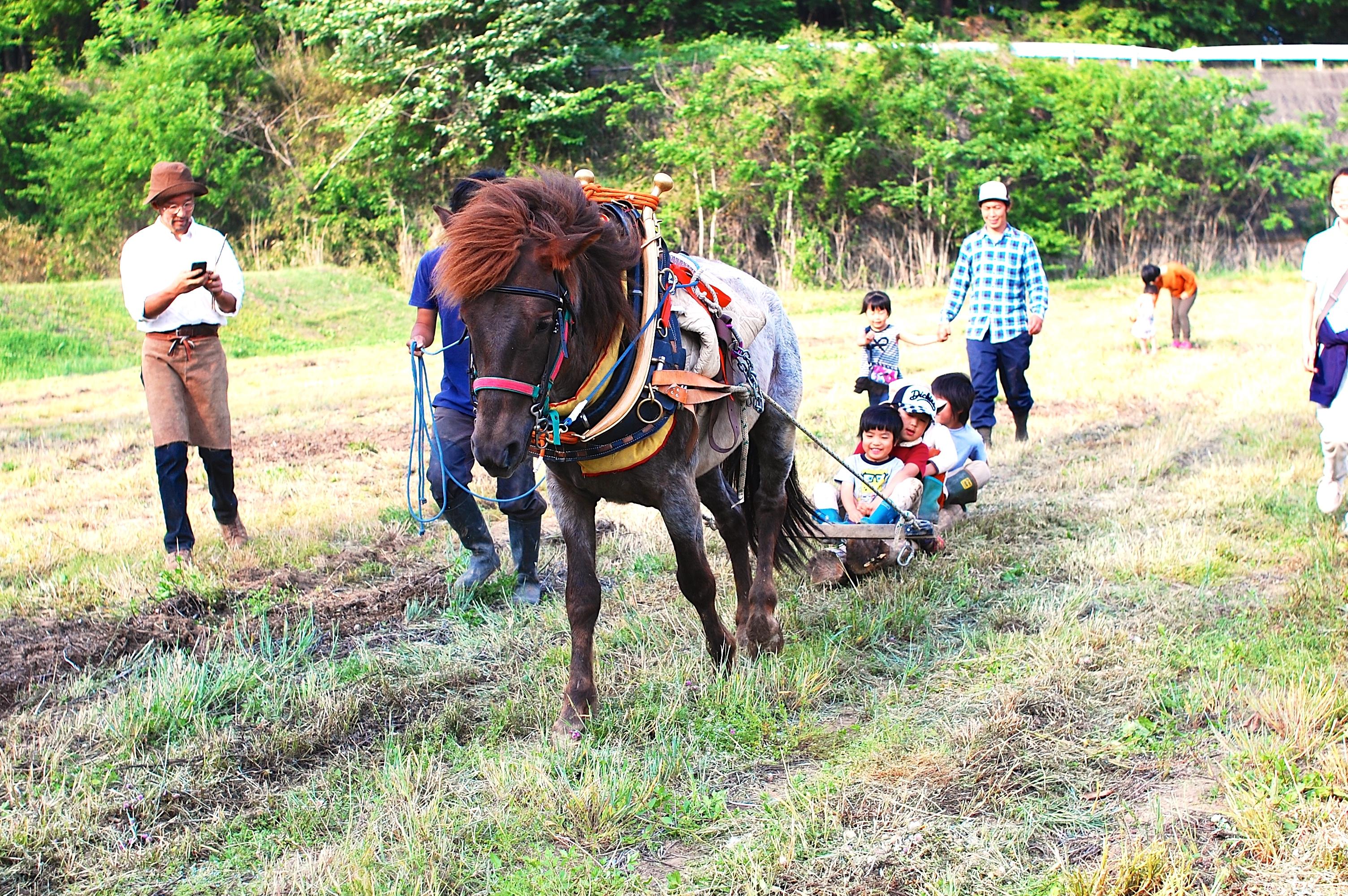 【4月1日(土)募集締め切りました】小菅村 春の馬耕体験
