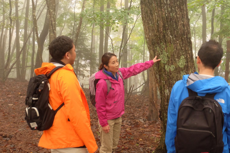源流の森で、企業の新次世代リーダー研修