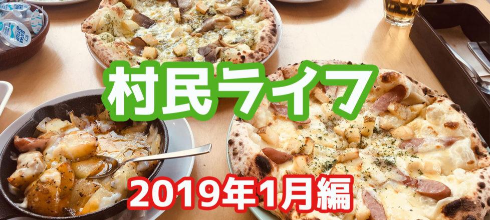 村民ライフ~2019年1月編~