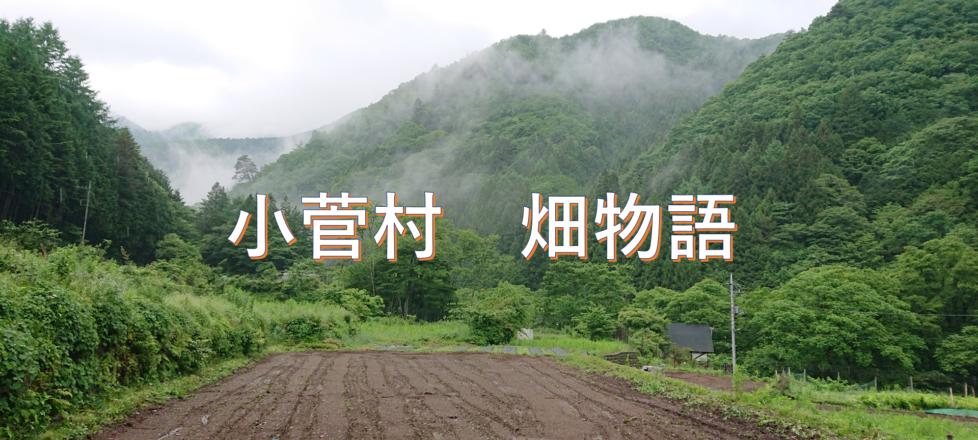 小菅村 畑物語